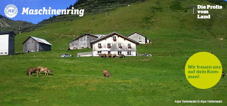 Alppflegetag Vorarlberg