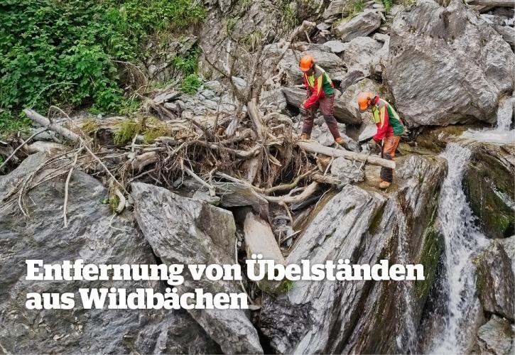 Beseitigung von Übelständen aus Wildbächen - Maschinenring Tirol