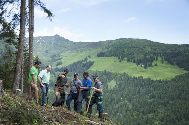 Forstservice Tirol Team in Fügenberg