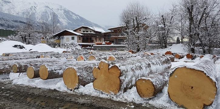 Wertholzsubmission Tirol - Nadelholz - Forstservice Tirol