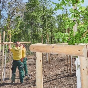 Maschinenring Mitarbeiter pflanzen Bäume