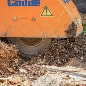 Wurzelstock fräsen: Baumstumpf entfernen lassen vom Maschinenring