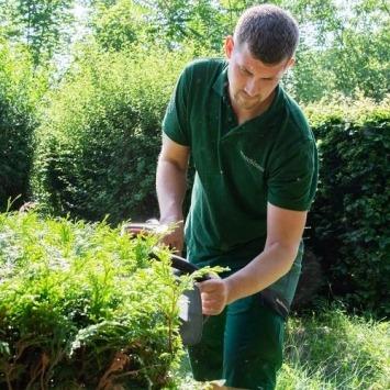 Gartenpflege vom Maschinenring