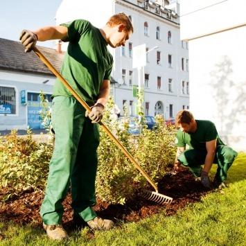 Maschinenring Mitarbeiter jäten Unkraut im Blumenbeet im Rahmen der Hausbetreuung und Objektbetreuung.