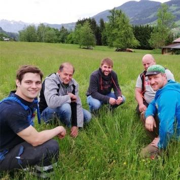 Versuch: Bio-Feldfutteranbau mit/ohne Luzerne