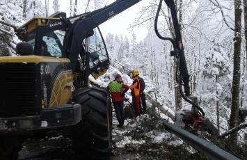 Schadholz-Aufarbeitung in Kärnten nach Föhnsturm Yves: Forststraßen vorn Bäumen befreien