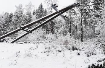 Schadholz-Aufarbeitung in Kärnten nach Föhnsturm Yves: umgestürzter Strommast