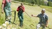 Reinhold und Jannik halfen vier Wochen auf Martins Betrieb