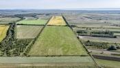 Feldversuch Teilflächenspezifische Aussaat