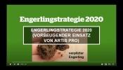 Engerlingstrategie 2020 (vorbeugender Einsatz von Artis Pro)