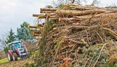 Biomasse vom Maschinenring