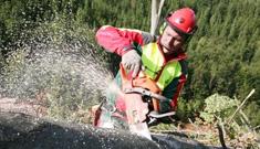 Forstdienstleistungen für Gemeinden vom Maschinenring