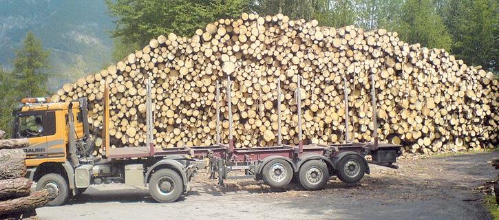 Holzhandel Partner Maschinenring