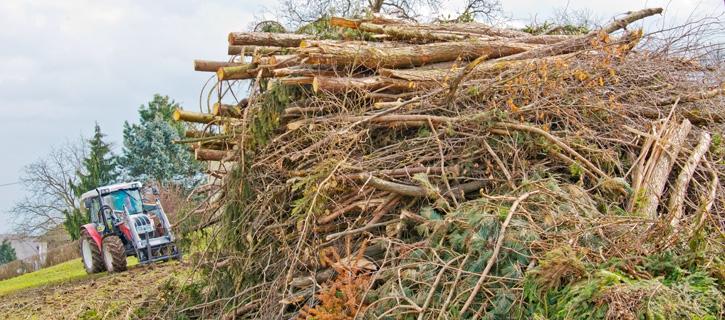 Biomasse aus der Region vom Maschinenring