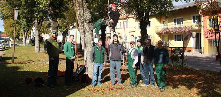 Probeklettern für zukünftige Baum-Sherrifs
