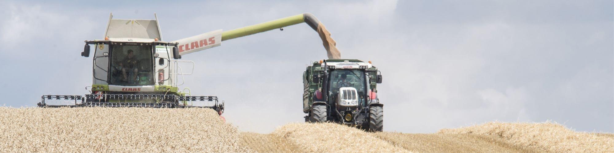 Agrar Dienstleistungen des Maschinenring, im Bild Ernte mit Mähdrescher und Traktor