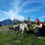 Diponentin Margarethe Strobl mit ihren Blobe Ziegen.