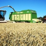 Kaltes Frühjahr – heißer Sommer – nasser Herbst: Streifzug durch das Agrarjahr 2019