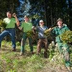 Forstliche Dienstleistungen