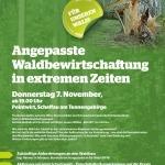 Angepasste Waldbewirtschaftung in extremen Zeiten