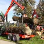 Holzkranwägen müssen regelmäßig überprüft werden