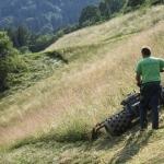 Arbeitsintensive Bewirtschaftung von Steilflächen