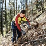 Unterstützung in der Aufforstung, von DI Markus Edenhauser – Forstkoordination MR Salzburg
