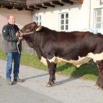 Große Freude bei Hubert Wörgötter, Moosburg, Uttendorf über den Verkauf seines Prachtstieres FRANSER.