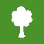 Was ist eigentlich ein Baumkataster?