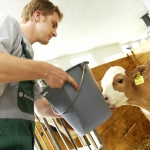 Landwirtschaftlicher Mitarbeiter gesucht (m/w)